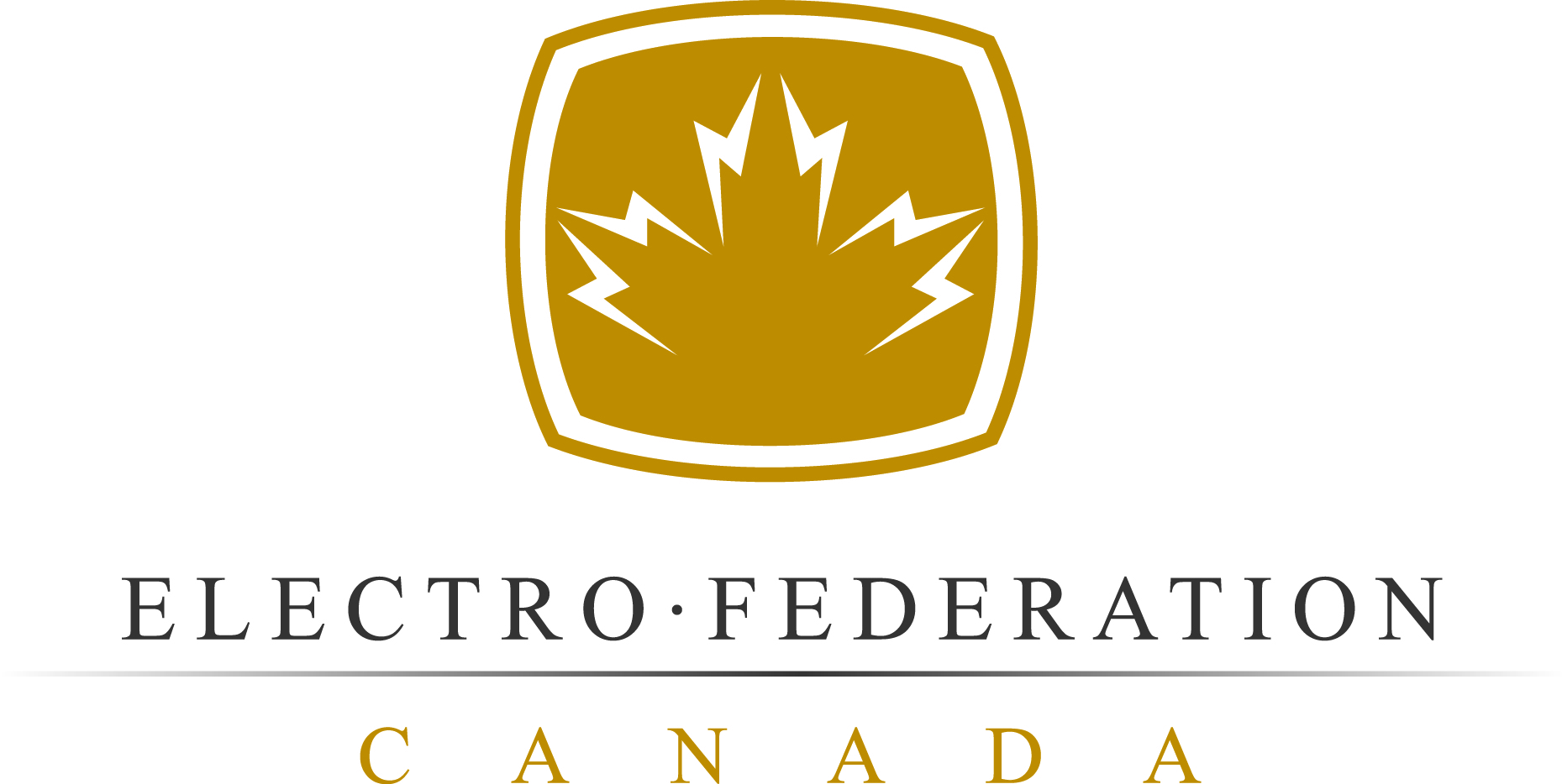 Electro Federation Canada standards